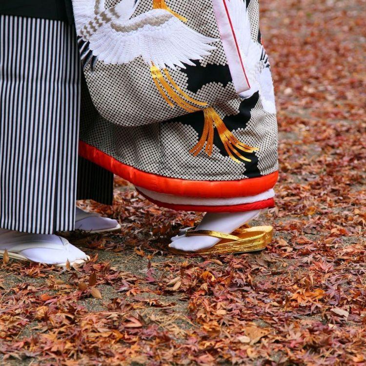 人気の秋シーズンもお得に!【秋婚】プランが登場